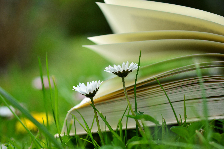 cumpăr cărți în regim de anticariat